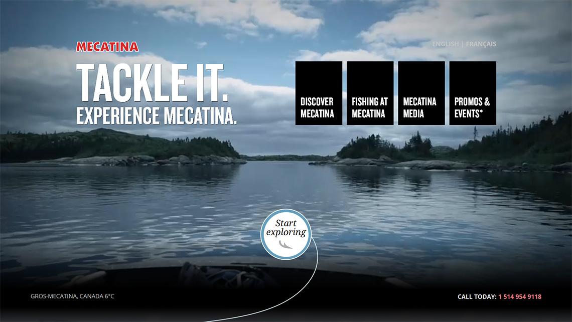 Mecatina Web Design Homepage
