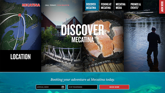 Discover Mecatina Website Design
