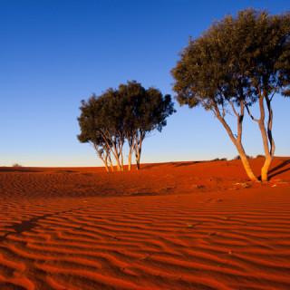 Australian Outback Drilling
