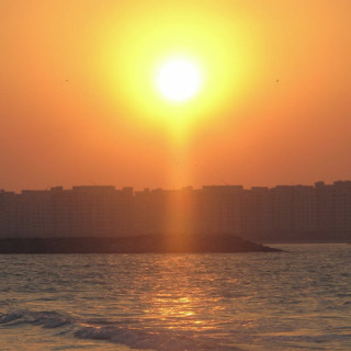 Carbon free Abu Dhabi