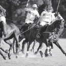 THE RUSH OF POLO