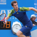 Andy Murray: King of Tennis on the Rise